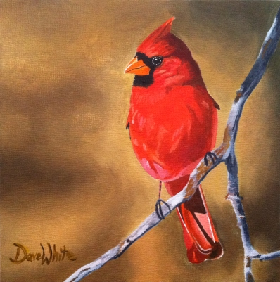 """cardinal painting"", ""bird painting"", ""oil painting"", ""original painting"", ""dave white painting"", ""dave white art"", ""red cardinal painting"""