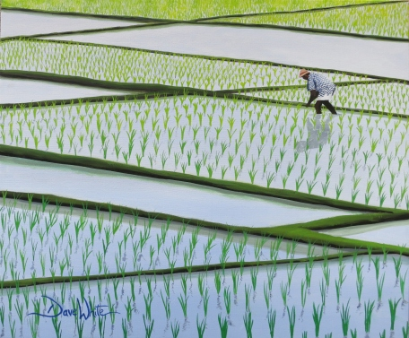 """""""rice paddy painting"""", """"dave white paintings"""", """"asian painting"""", """"rice field painting"""", """"asia painting"""""""