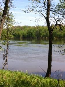 Potomac River 1