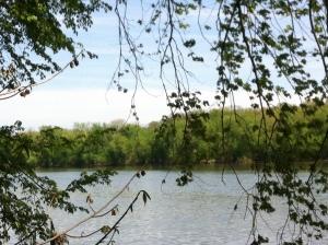Potomac River 5