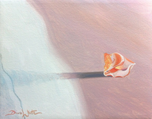 seashell painting, art from artist, direct from artist, buy painting, beach painting, art, artist dave white, art on ebay