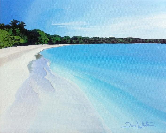 puerto rico painting, beach painting, artist dave white, playa santa puerto rico