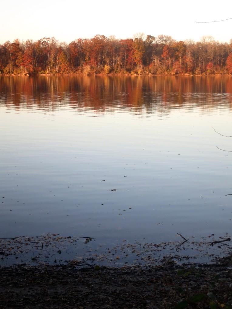 Algonkian Park, Potomac River