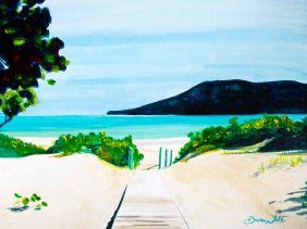 flamenco beach painting, flamenco beach puerto rico, flameno beach art