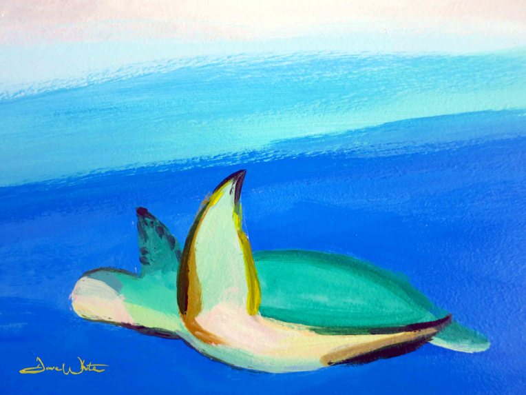 turtle, art, painting, sea turtle, turtle painting, dave white