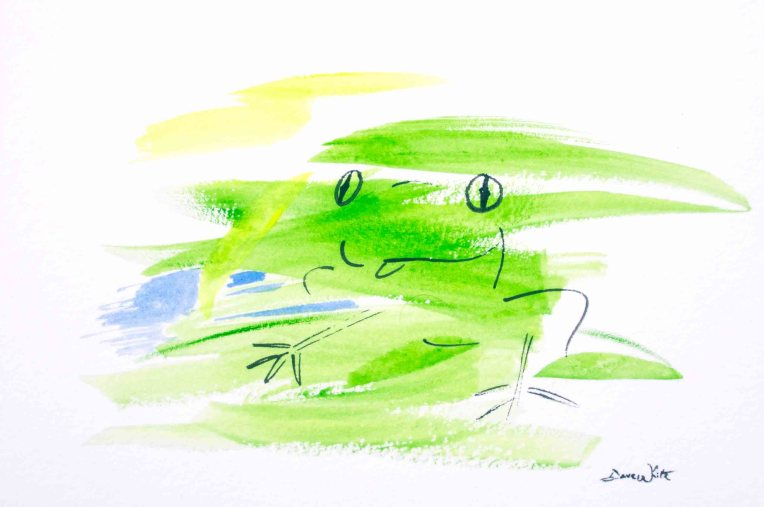 frog art, frog drawing, frog illustration, frog painting, animal art, affordable art