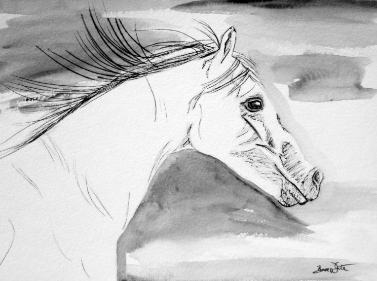 horse art, horse drawing, horse painting, stallion art, stallion drawing, stallion painting, animal art, animal drawing, animal painting