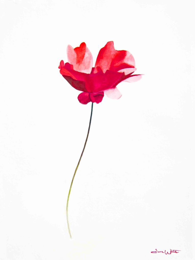 """red flower painting"", ""floral art"", ""flower wall art"""