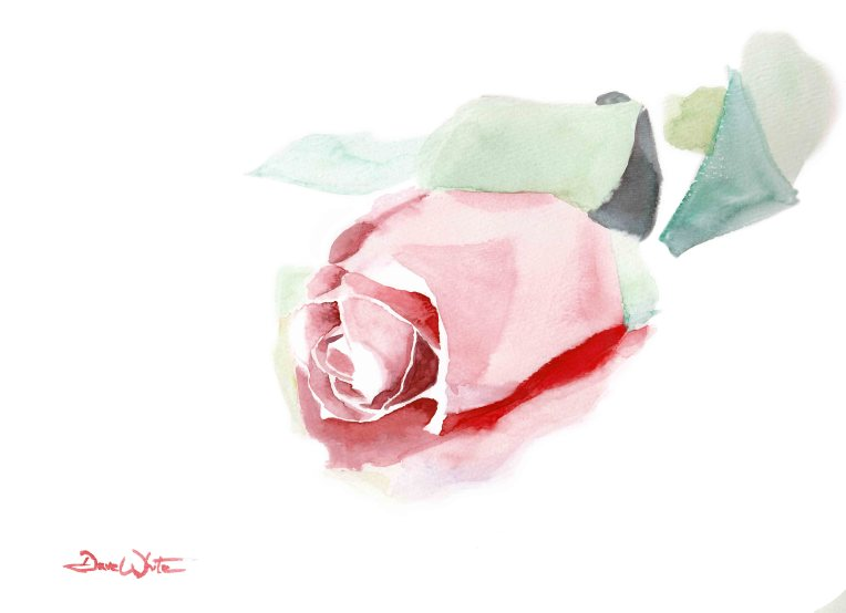 """buy rose painting"", ""buy rose watercolor"", ""rose watercolor"", ""rose painting"", ""pink rose watercolor"", ""pink rose painting"""