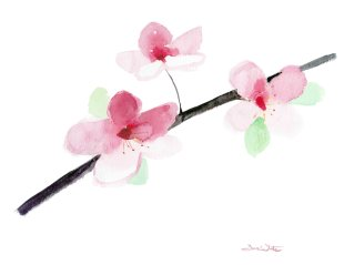 """""""cherry blossoms painting"""", """"cherry blossoms watercolor"""", """"cherry blossoms art"""", """"cherry blossoms artwork"""", """"buy cherry blossoms painting"""""""