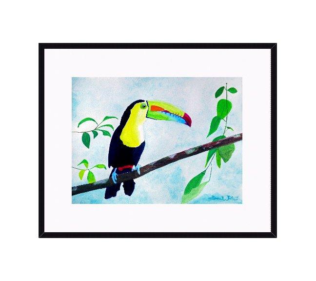 """toucan watercolor"", ""toucan painting"""