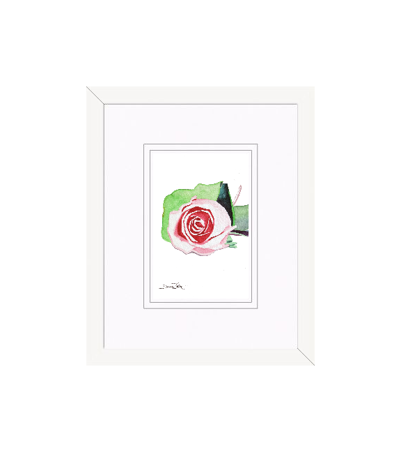"""framed rose watercolor"", ""small rose painting"", ""framed rose painting"", ""framed rose art"", ""4x6 rose painting"""